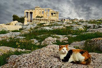 El Erecteion, el templo que permanece a la sombra del Partenón, es la mejor de las sorpresas de la Acrópolis, con el pórtico de las Cariátides como estrella